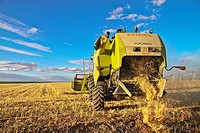Combine-harvester on a field of wheat in Castile and León, Spain