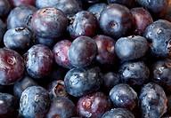 Macro shot of Blueberries