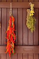 dried chili pepper rosmery and chamomile