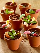 Chocolate cake with gummi worms in flower pots