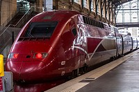 Paris, France, TGV High Speed Train, Thales, Service to Brussels and Amsterdam, on Quay in Train Station, Gare de Nord
