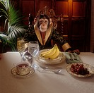 Chimpanzee Seated at Dinner Table