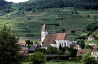 Austria, Wachau Valley, Village Spitz surrounded with vineyards
