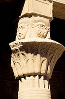 Egypt, Aswan, Nile River, Agilkia Island, Philae, West Colonnade, Close_Up of Floral Capital