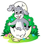 Easter bunny theme image 2 _ picture illustration.