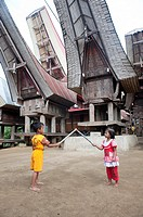 Toraja traditional house in tana toraja, sulawesi,indonesia