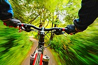 Cyclist riding along a forest path