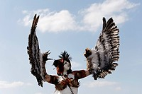 Cosplayer dressed as a bird of prey, waving with their wings, Japan Day, Duesseldorf, North Rhine-Westphalia, Germany, Europe