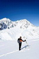 Backcountry skier during the ascent to the peak of Hintere Schoentaufspitze mountain, Sulden, Ortler mountain and Zebru mountain at the back, province...