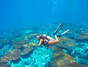 Young woman in scuba gear exploring a coral reef _ copyspace