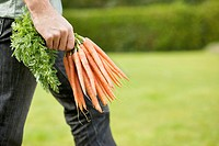 Man holding a bunch of carrots (thumbnail)