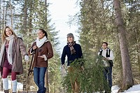 Friends carrying fresh cut Christmas tree in woods
