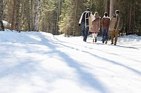 Couples carrying sleds in snowy woods