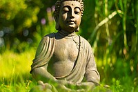 Buddha meditation in the open countryside