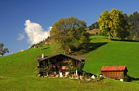 Traditional farm house in the Bernese Oberland
