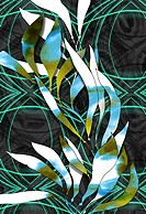 Contemporary seaweed design