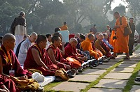 Monks from all Buddhist traditions meeting for a communal prayer with the Dalai Lama, Global Buddhist Congregation 2011, Gandhi Smitri, New Delhi, Ind...
