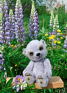 Teddy bear Chupa among flowers