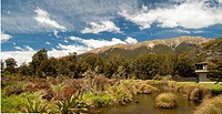 View Of Landscape And Stream Near Saint Arnaud, South Island New Zealand
