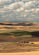 Summer hills and clouds, Whitman County, Washington, USA