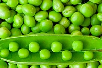 Pea background