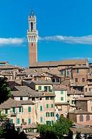 Cityscape Siena