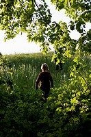 View of two boys walking up a hill (thumbnail)