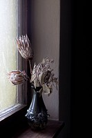Dried flowers in a vase (thumbnail)