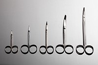 Various surgical scissors arranged from smallest to largest