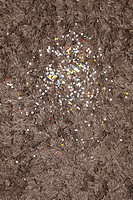 Confetti sprinkled on a brown shag rug