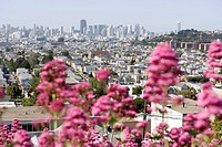 City view, San Francisco, California, USA