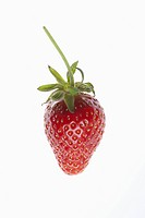 A single strawberry on a white background (thumbnail)