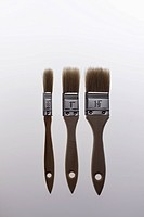 Three various sized house painting brushes in a row