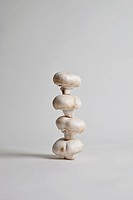 Four mushrooms arranged in a stack, studio shot