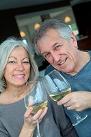 Portrait of happy senior couple cheering with wine