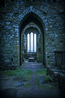 A mysterious view Timoleague Abbey, County Cork, Ireland, Europe