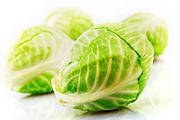 Studio shot of a Cabbage