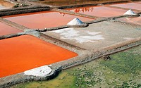 France, French, industry, ponds, pans, pattern, salt, salterns, salt pans, salt production, Vendée