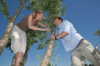 Germany, North Rhine Westphalia, Duesseldorf, Couple playing on top of tree, smiling