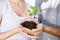 Germany, Cologne, Young couple holding seedling (thumbnail)