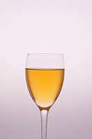 Studio shot of a champagne glass