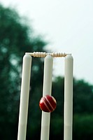 Cricket ball hitting cricket stumps