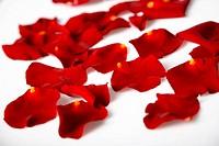 Sparsed petals
