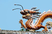 The dragon on the roof top, vietnam