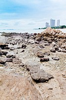 Beaches, rocky areas and sea.