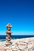 On the limestone coast of the island Oeland