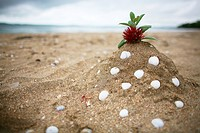Sandcastle with Pohutukawa flower on top