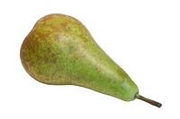 A conference pear
