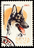 Alsatian dog on post stamp