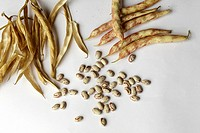 bainas vegetables and bean seeds on white background